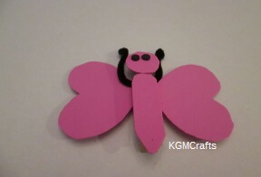 link to butterfly page